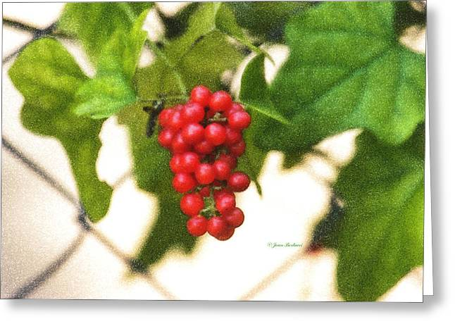 Greeting Card featuring the photograph A Red Cluster by Joan Bertucci