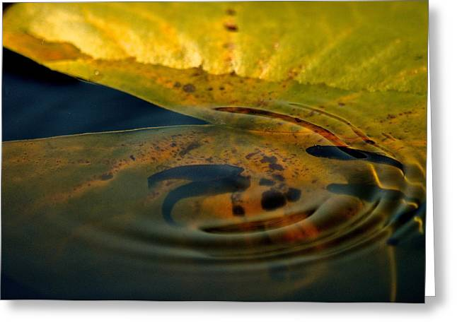 A Ripple In Time Greeting Card