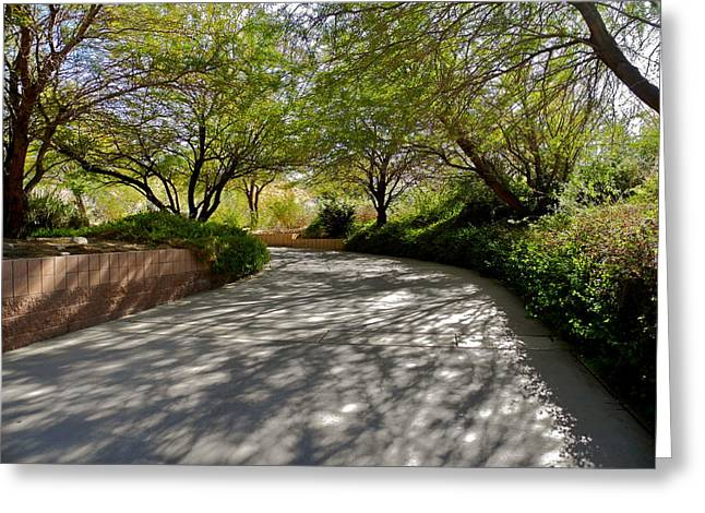 A Shadowed Drive In Palm Desert Greeting Card by Kirsten Giving