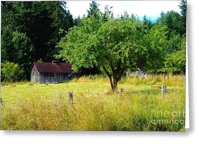 A Small Barn  Greeting Card by Jeff Swan