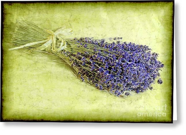 A Spray Of Lavender Greeting Card by Judi Bagwell