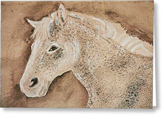 A Stallion Greeting Card by Remy Francis
