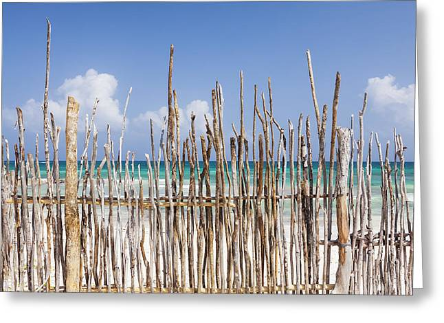 A Stick Fence Along The Beach At Tulum Greeting Card