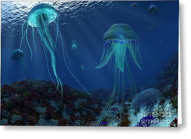 A Swarm Of Jellyfish Swim Greeting Card by Walter Myers