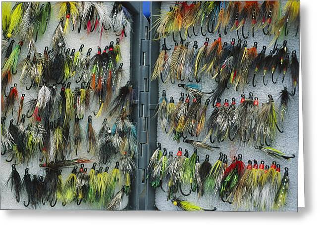 A Tackle Box Full Of Colorful Flies Greeting Card by Bill Curtsinger