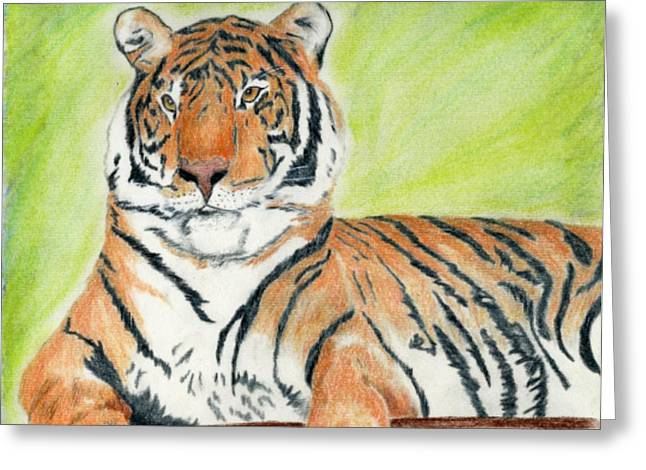 A Tiger's Rest Greeting Card by Mark Schutter