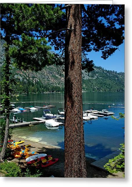 A Trees View Of Fallen Leaf Lake Greeting Card by LeeAnn McLaneGoetz McLaneGoetzStudioLLCcom