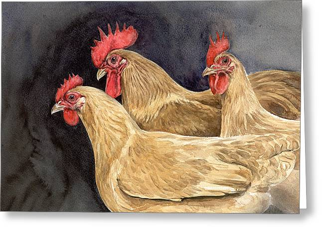 A Trio Of Buff Rock Chickens Greeting Card by Chris Pendleton
