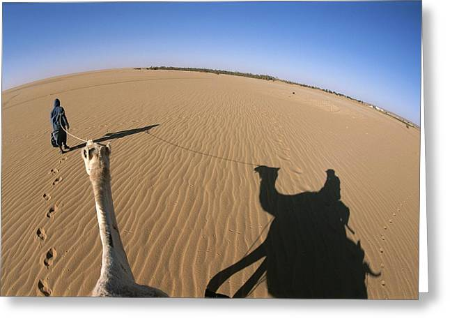A Tuareg Tribesman Leads His Camel Greeting Card by Carsten Peter