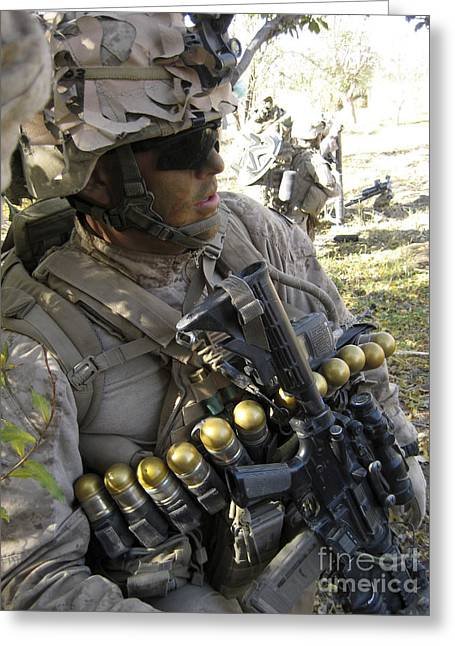 A U.s. Marine Takes Cover In An Orchard Greeting Card