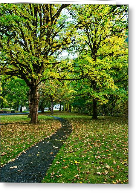 A Walk In The Park Greeting Card by Dan Mihai