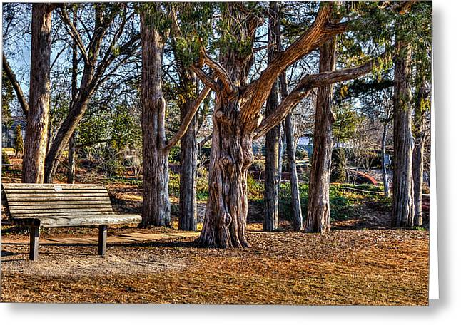 A Walk In The Park Greeting Card by Doug Long