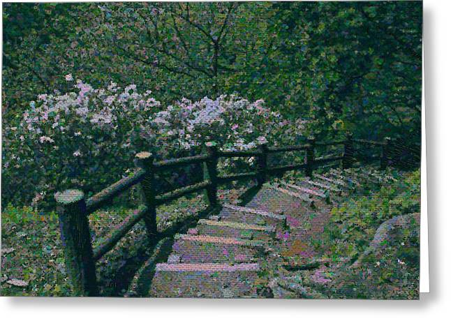 Greeting Card featuring the photograph A Walk In The Park by Tim Ernst