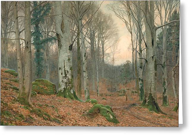 A Welsh Wood In Winter Greeting Card by JT Watts