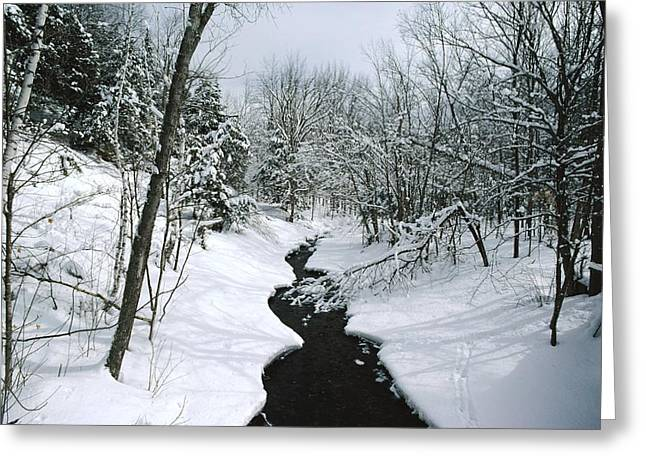 A Winter View Of Rush Brook Greeting Card by James P. Blair