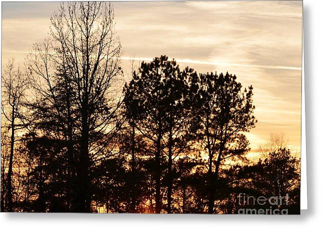 Greeting Card featuring the photograph A Winter's Eve by Maria Urso