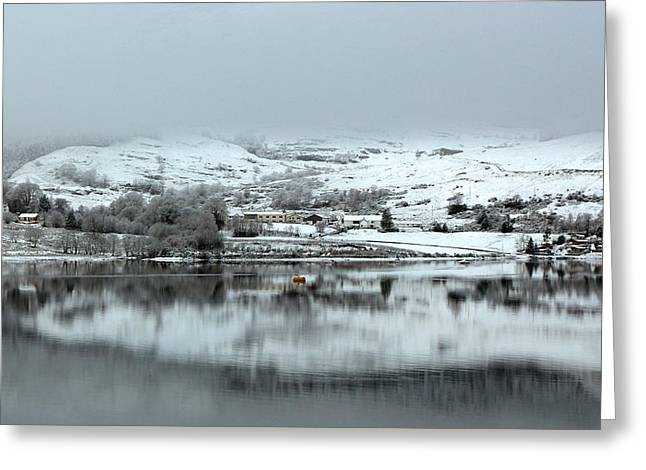 Greeting Card featuring the photograph A Winter's Scene by Lynn Bolt