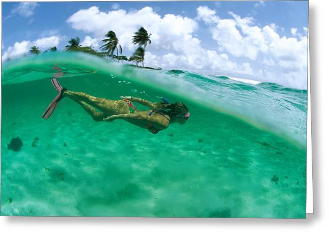 A Woman Snorkels Through Greeting Card by Barry Tessman