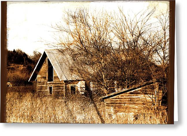 Abandoned Barn  Greeting Card by Ann Powell