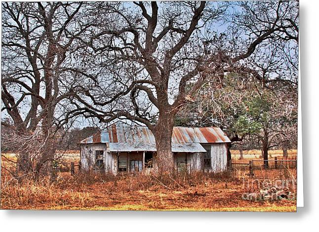 Abandoned House 512.3 Greeting Card by Joe Finney