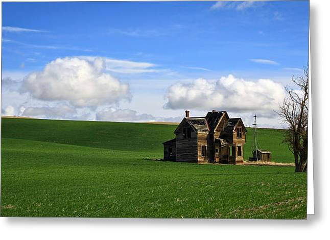 Abandoned House On Green Pasture Greeting Card by Steve McKinzie