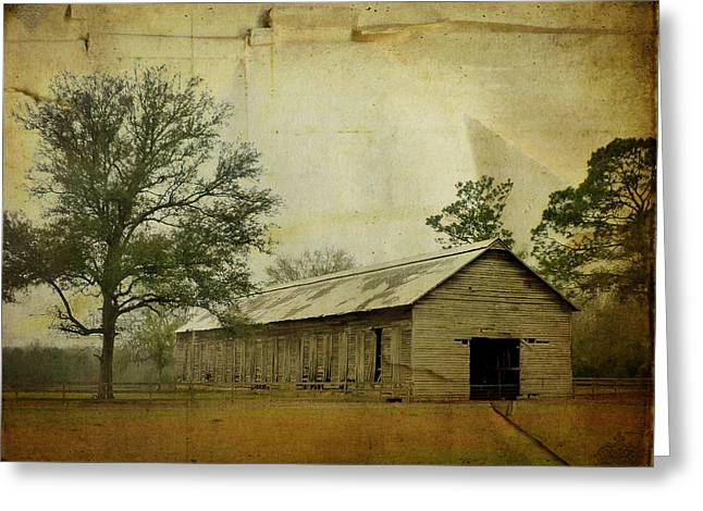 Abandoned Tobacco Barn Greeting Card by Carla Parris