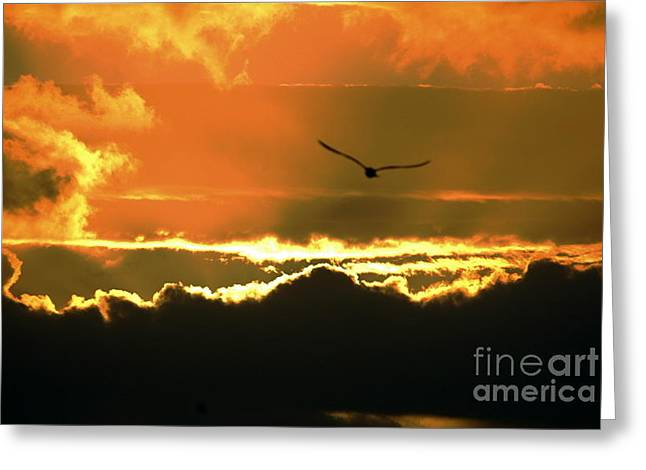 Above The Clouds Greeting Card by Johanne Peale