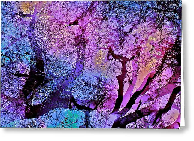 Abstract 97 Greeting Card by Pamela Cooper