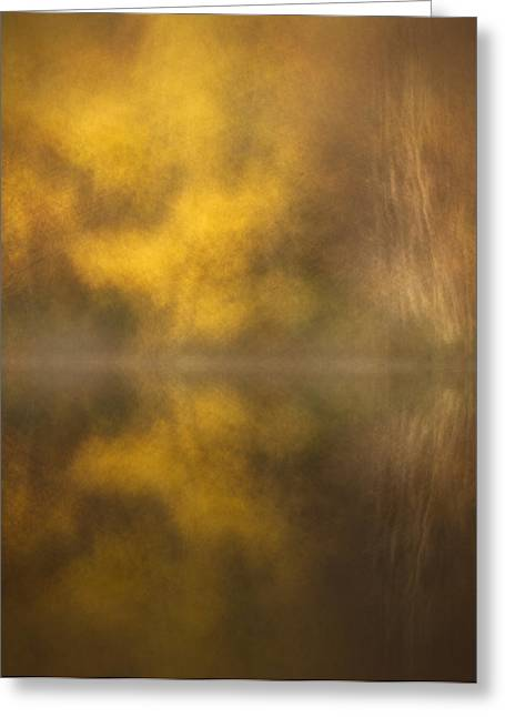 Abstract Birch Reflections Greeting Card by Andy Astbury