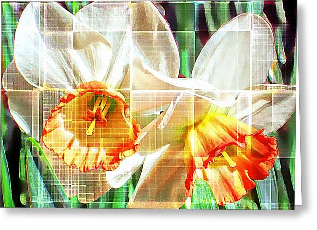 Abstract Daffodils  Greeting Card by Cathie Tyler