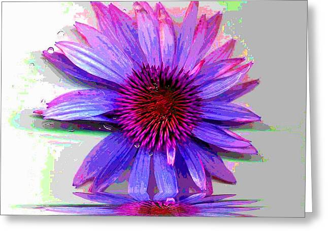 Greeting Card featuring the photograph Abstract Daisy by Carolyn Repka