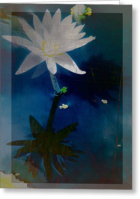 Abstract Lotus 1 Greeting Card by Debra     Vatalaro