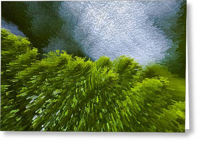 Abstract Pine Greeting Card by Serene Maisey