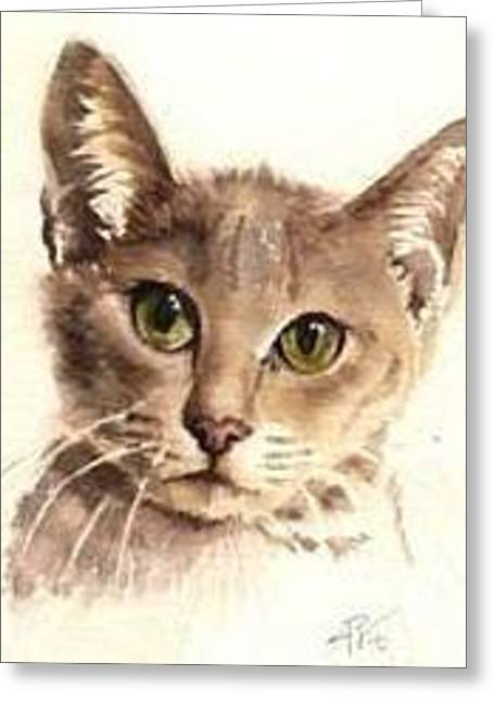 Greeting Card featuring the painting Abyssinian Cat by Sandra Phryce-Jones