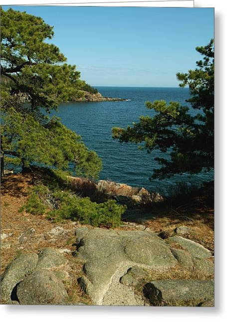 Greeting Card featuring the photograph Acadia In Maine by Rick Frost