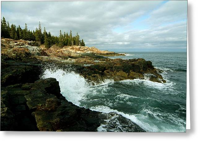 Greeting Card featuring the photograph Acadia On The Shore by Rick Frost