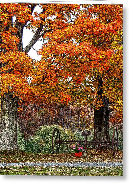 Adirondack Autumn Beauty Greeting Card by Diane E Berry