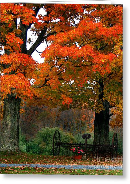 Adirondack Palette Greeting Card by Diane E Berry