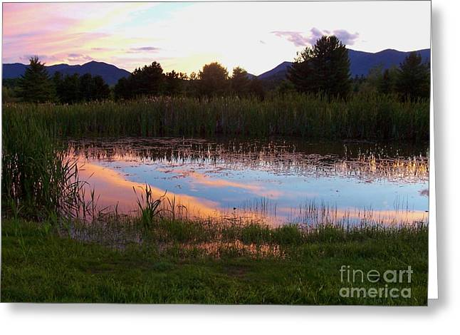Adirondack Reflection 1 Greeting Card by Peggy Miller
