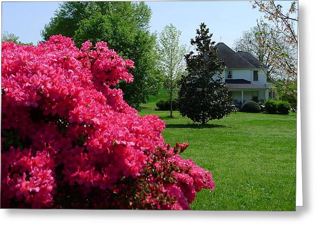 Adrian Shuford House - Spring 2012 Greeting Card