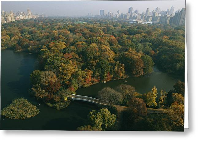 Aerial View Of Central Park Greeting Card by Melissa Farlow