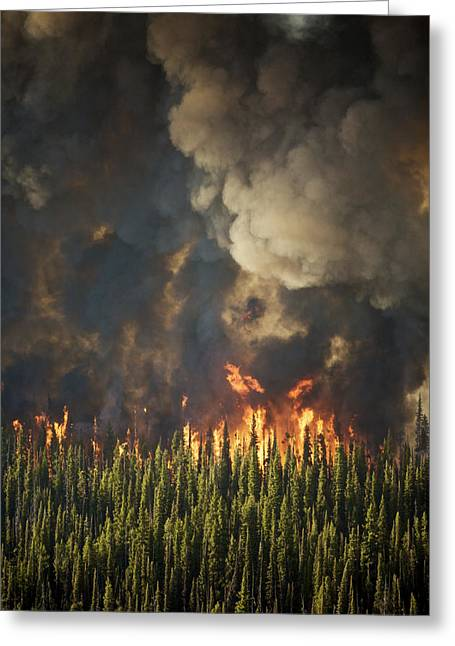 Aerial View Of Forest Fires Greeting Card
