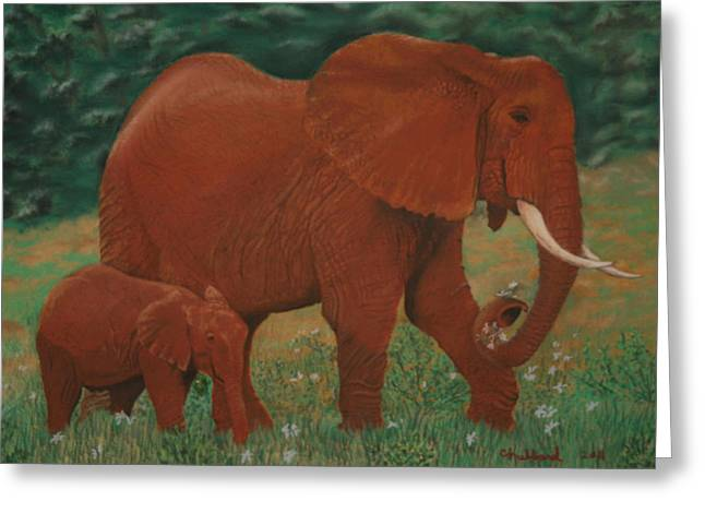 African Elephant And Baby Greeting Card by Charles Hubbard