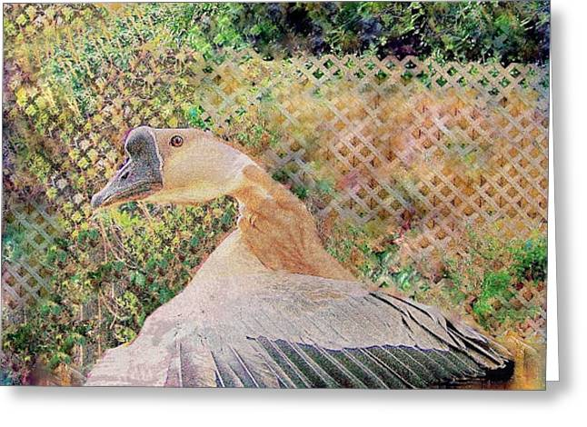 Greeting Card featuring the mixed media African Goose  by YoMamaBird Rhonda