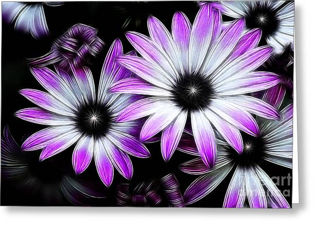 Africian Daisy Greeting Card by Carol A Commins
