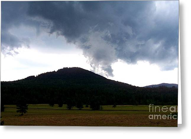 After The Storm 3 Greeting Card by Peggy Miller
