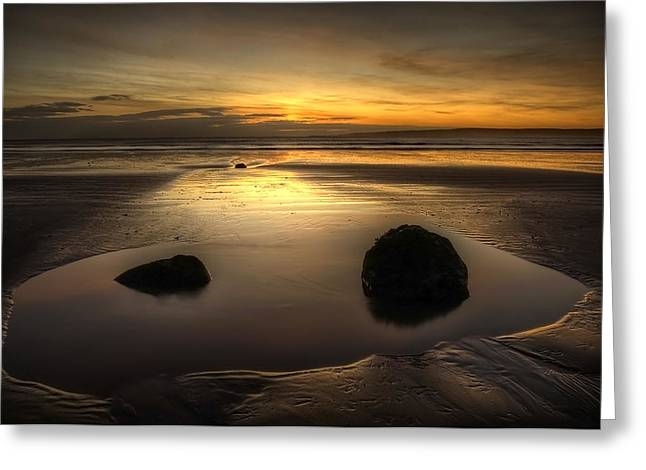 After Tide Out Greeting Card by Svetlana Sewell