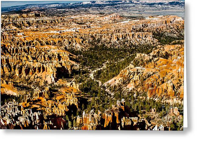 Afternoon In Bryce Greeting Card by Robert Bales