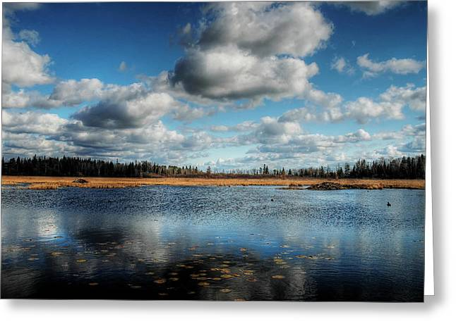 Afternoon Reflections At The Marsh Greeting Card by Heather  Rivet