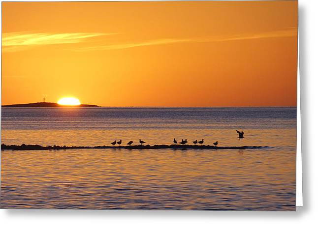 Greeting Card featuring the photograph Agua Verde Sunrise by Anne Mott
